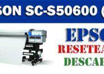Resetear impresora Epson SureColor SC-S50600 (4C)