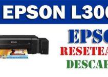 Descargar programa para resetear Epson L300